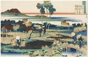 Japan and conventional medicine