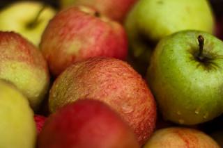 adam apple varicose)