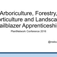 Trailblazer apprenticeships