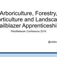 Trailblazer apprenticeships