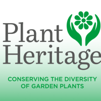 Big data: using plant records to identify and conserve threatened plants