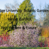 Cambridge University Botanic Garden: Winter Garden