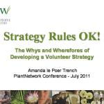 Strategy rules - how and why to develop a volunteer strategy