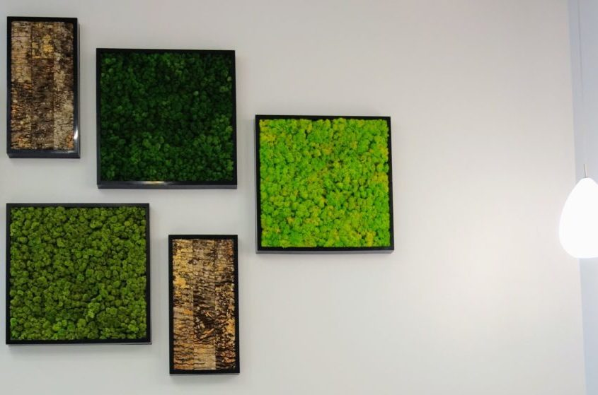 Living Art BioMontage Moss Wall