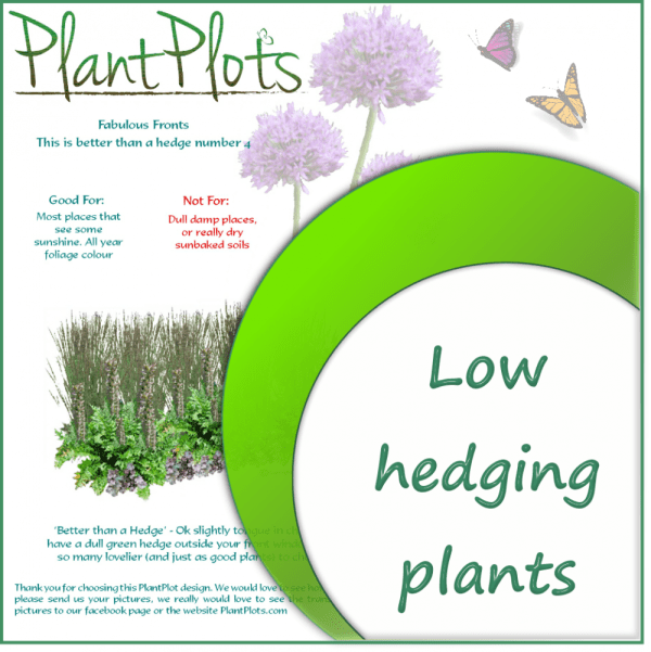 link to plants for hedging garden design product