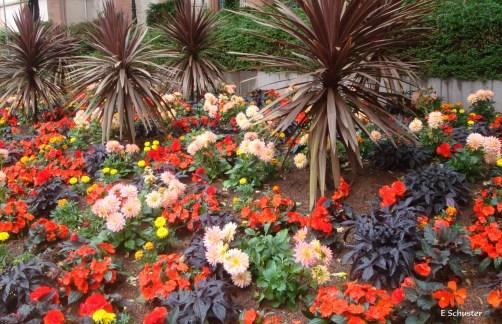 flower-bed-1616329