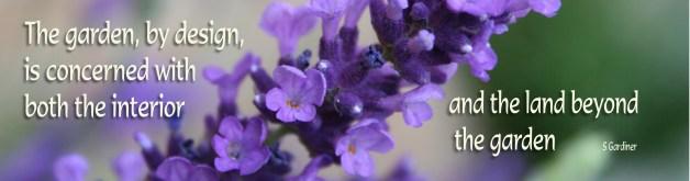 lavender quote