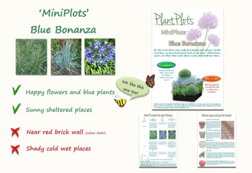 Garden Border Planting Design Plan blue theme border plants