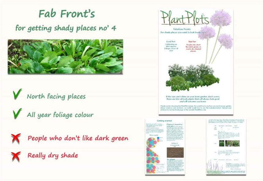 plants for shady borders garden design product