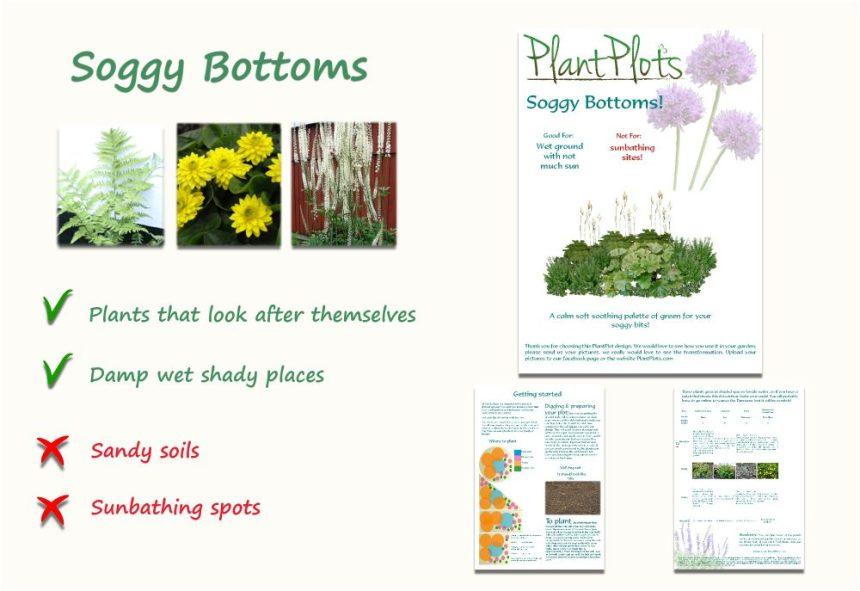 plants for wet gardens border design product