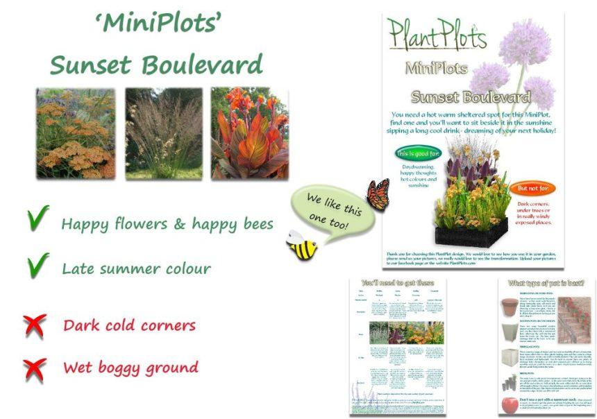 Garden Border Planting Design Plan orange flowers