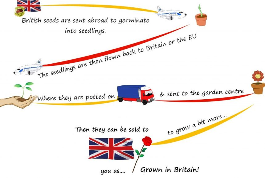 What grown in the UK really means