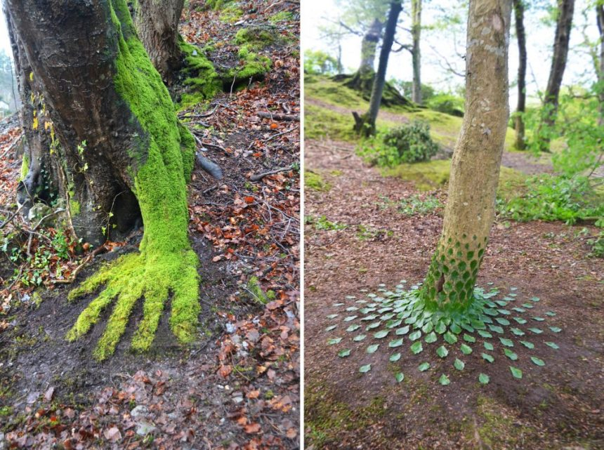 moss and leaves sculpture on tree trunk
