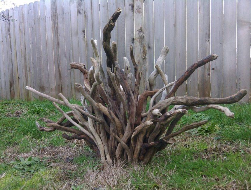 driftwood stump sculpture