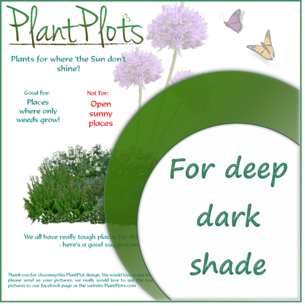 link to plants for shade garden design product