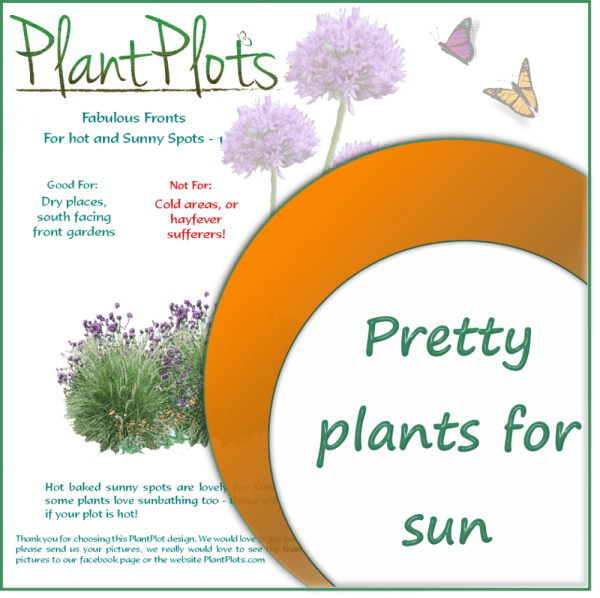 link to plants for sunny gardens border design product