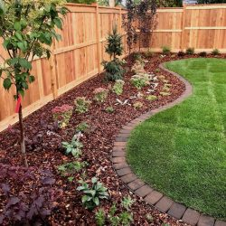 undulating garden border, edged with brick and newly planted