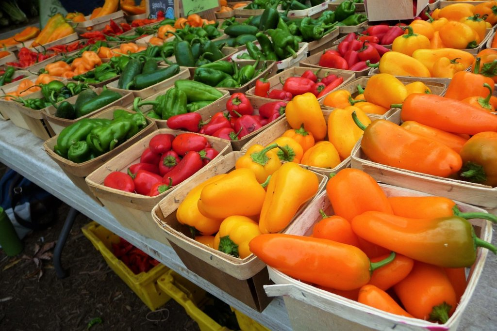 A beautiful rainbow of colorful peppers helps you focus on all of the healthy options you have