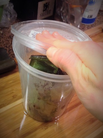 To remove the skins of the Poblanos, place them in a container and cover tightly. The steam will help the skins release
