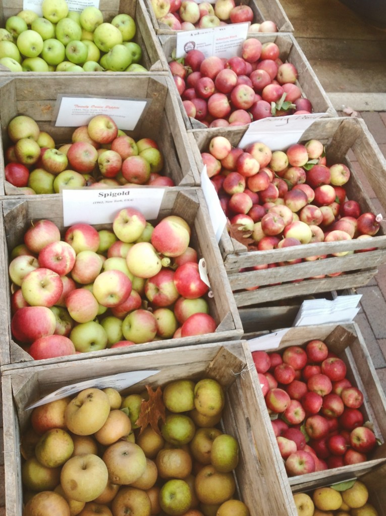 Healthy Organic Apple Varieties from the Madison, Wisconsin Farmers Market
