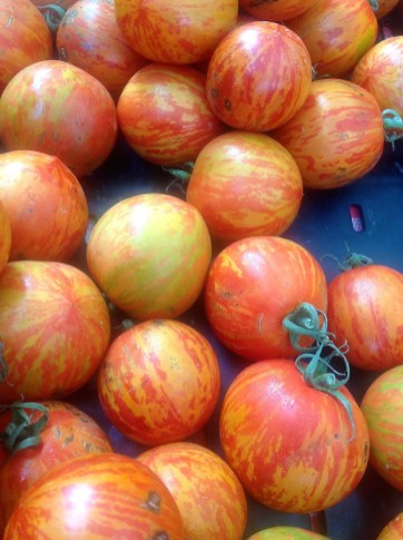 Choose whatever tomatoes look best at the market. These Red Zebra tomatoes have sweet flavor and make a beautiful salad