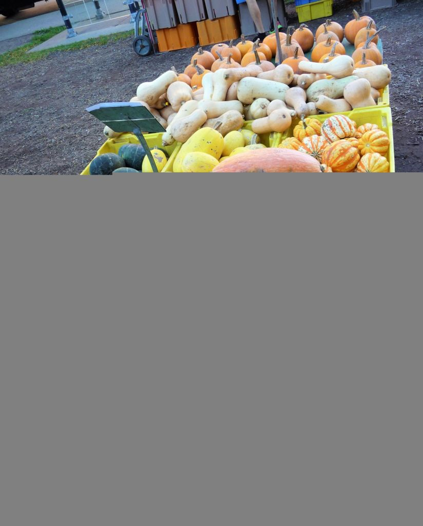 Fall Squash Varieties at the Green City Farmer's Market