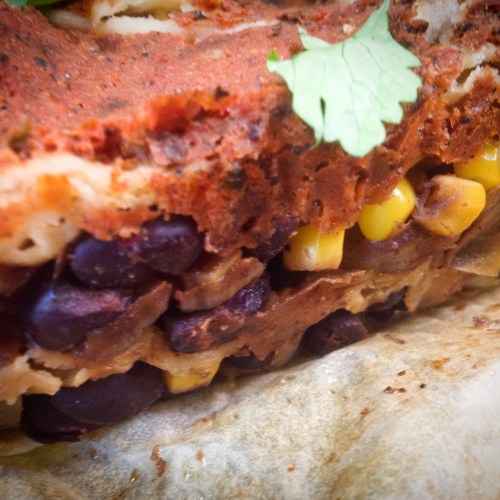 Easy Red Enchilada Black Bean Mexican Casserole - Healthy, Plant-Based, Oil-Free, Gluten-Free Vegan Dinner Recipe from Plants-Rule