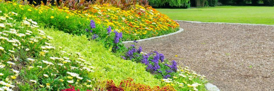 Plantscapes provides everything you need from turf care to irrigation to seasonal color.