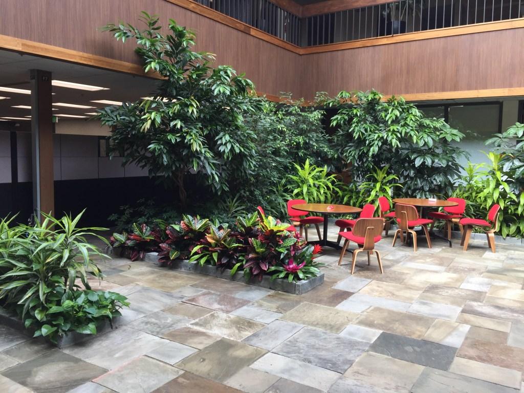 Physio Atrium Renovation