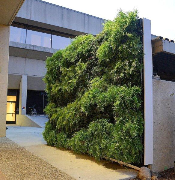 florafelt vertical garden systems Florafelt Pro System | Plants On Walls