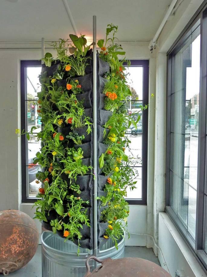 florafelt vertical garden systems Aquaponic Vertical Vegetable Garden – Plants On Walls