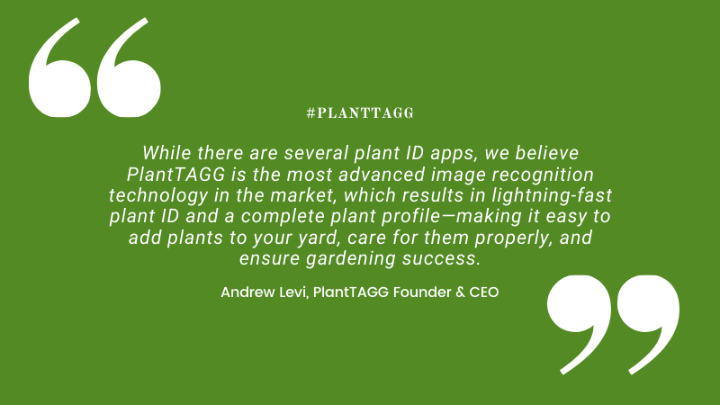 PlantTAGG Plant ID uses cutting-edge image rec technology