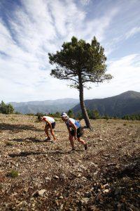 Dos corredores, con la lengua fuera, encumbran lo más alto de las sierras, en una edición anterior (Foto: Óscar Campos)