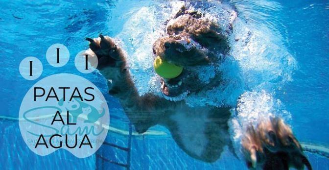 Patas al agua en la piscina de Mérida