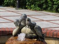 Una rana soñadora