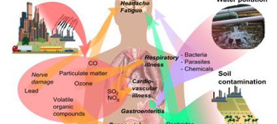 Persistant Organic Pollutants – plasticisrubbish