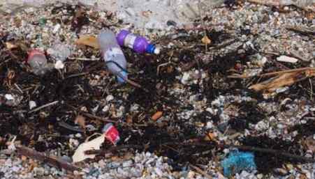 Dioxins & Burning plastic – plasticisrubbish