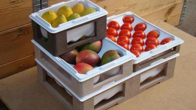 Foto de Embalagens plásticas reduzem perda de alimentos