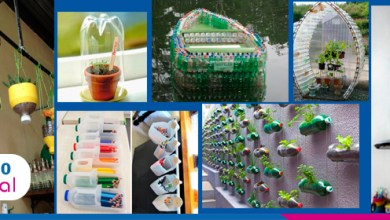 Foto de 8 ideias criativas para reaproveitar embalagens plásticas
