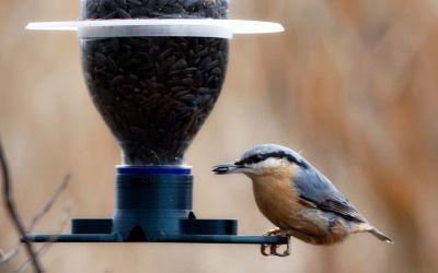 Recyklace PET láhve – ptačí krmítko