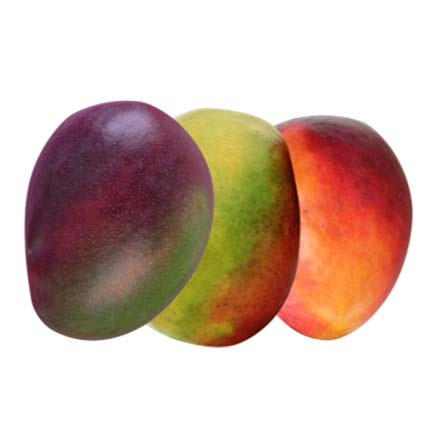 GPL - Somos maduradores Mango