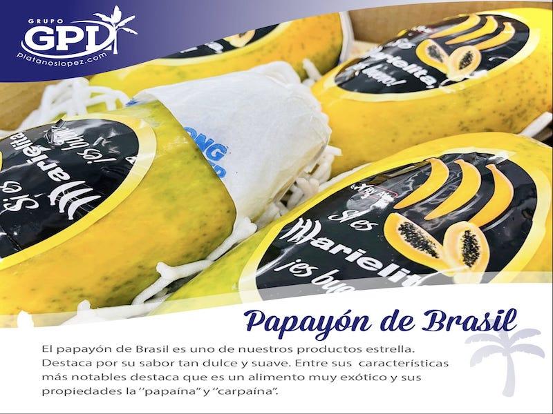 propiedades del papayo