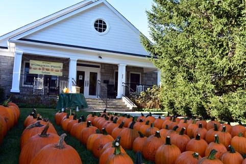pumpkin (6)