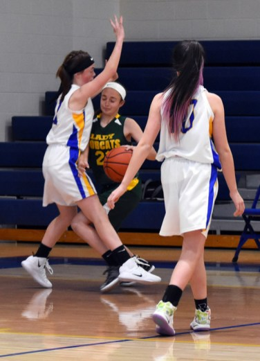 Highlands.Blue.Ridge.basketball.MS (11)