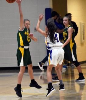 Highlands.Blue.Ridge.basketball.MS (60)