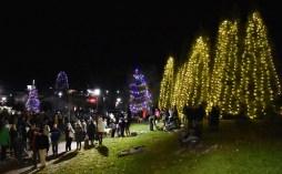 Highlands.Christmas.Tree.Lighting (41)