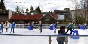 Ice.skating.11.18 (26)