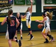 blue.ridge.basketball.MS.girls.Scotts (26)