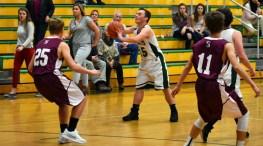 BR.Swain.basketball.JV (13)