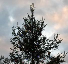 Christmas.Highlands (4)